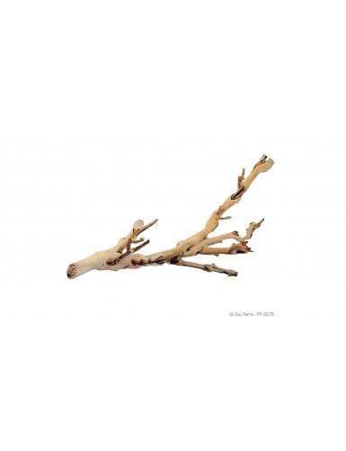 Forest Branch Exo Terra