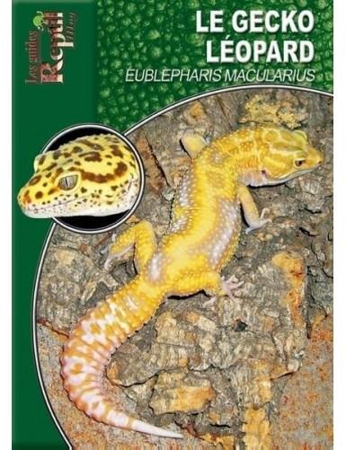 Le gecko léopard (Eublepharis macularius)
