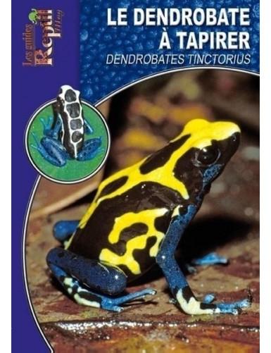 Le dendrobate à tapirer (dendrobates tinctorius)