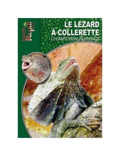 Le lézard à collerette (Chlamydosaurus kingii)
