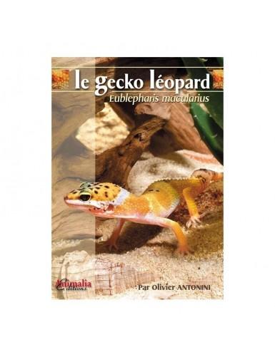 Le gecko leopard