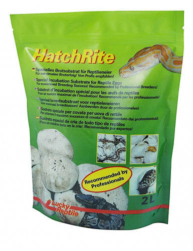 HatchRite Lucky Reptile