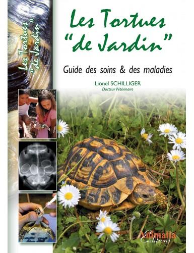 """Les tortues """"de jardin"""""""