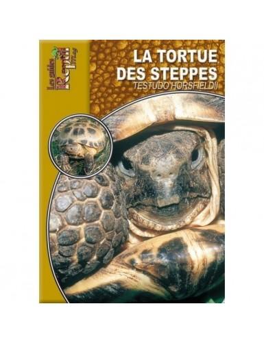 La tortue des steppes (testudo horsfieldii)