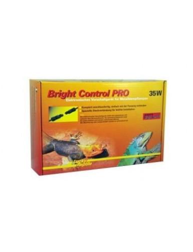 Bright Control Pro Lucky Reptile
