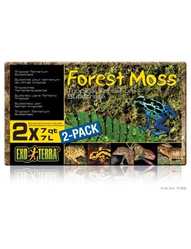 Forest Moss Exo Terra