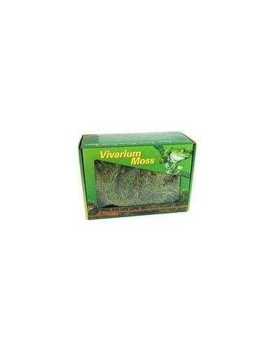 Vivarium Moss Lucky Reptile