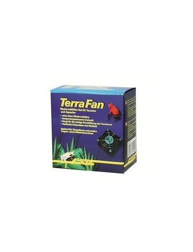 Terra Fan Set Lucky Reptile