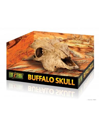 Buffalo Skull cachette crâne de buffle Exo Terra