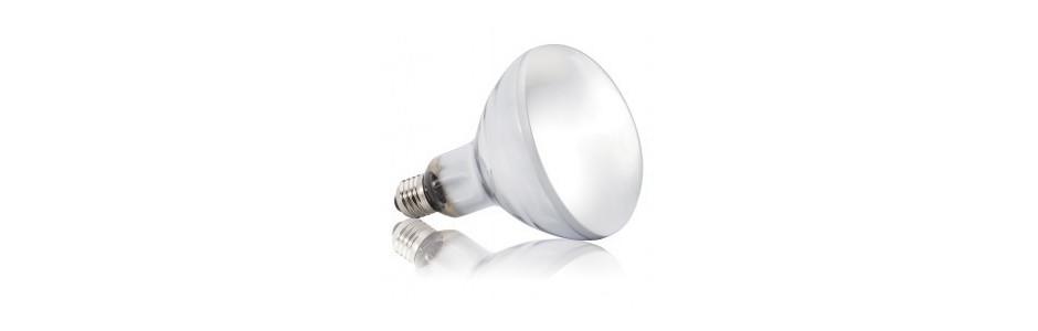 Ampoules UVb