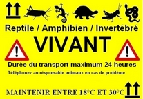 Animaux vivants